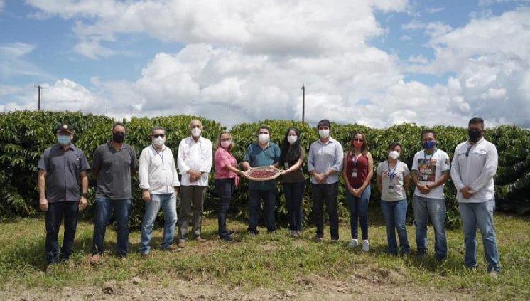 UFAM, Embrapa e FAPEAM comemoram primeira colheita de CAFÉ